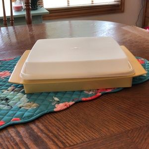 Tupperware Egg Carrier